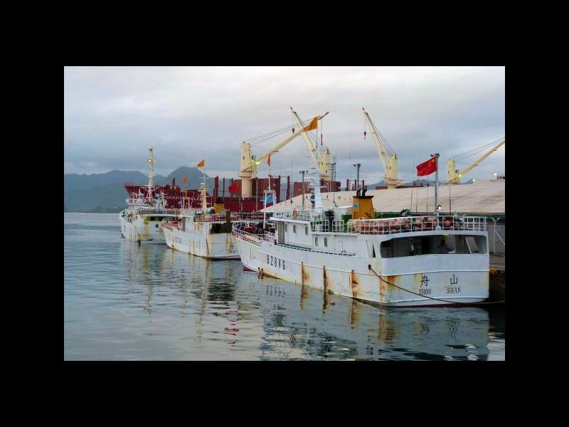 Full chinese fishing boats  suva harbour