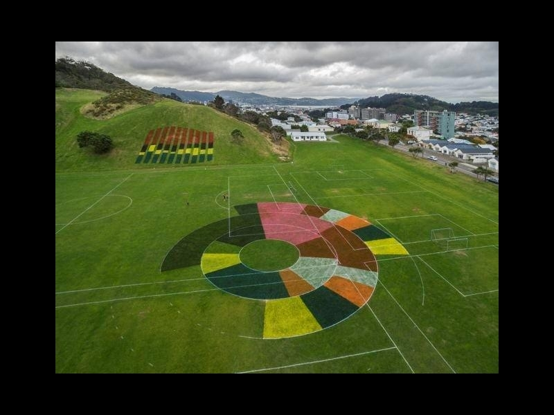 Full projected feilds project on macaslister park  wellington  artist siv fjaestard  photo courtesy letting space 800