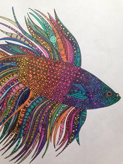 Lynn Freemans Colouring In From Johanna Basfords Lost Ocean