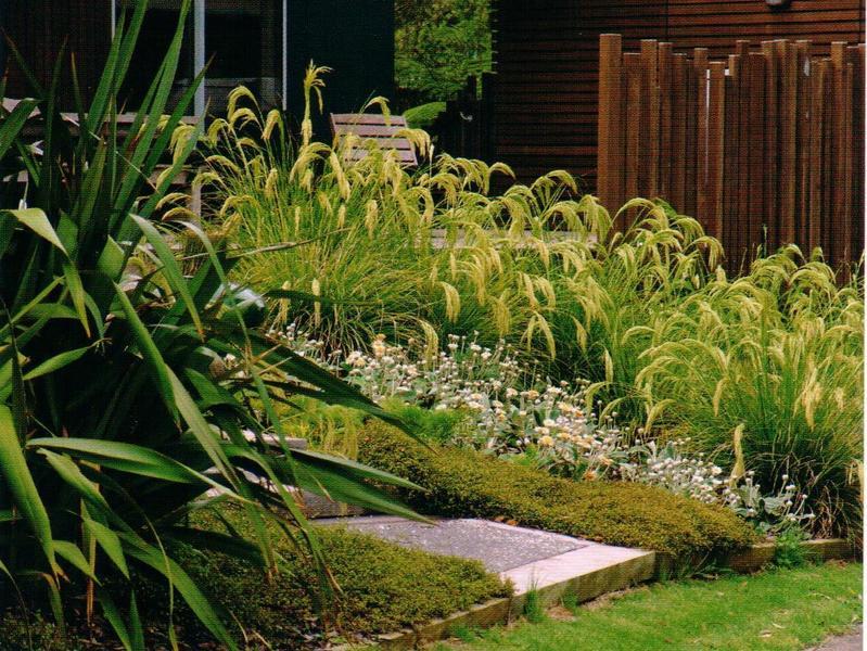 Coastal gardens for Small garden design ideas nz