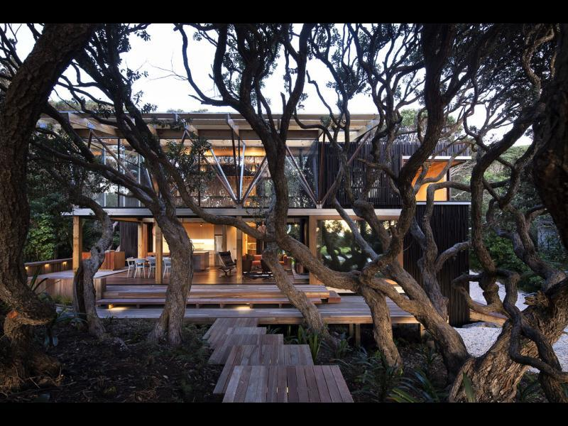 Full under pohutukawa hse 5591