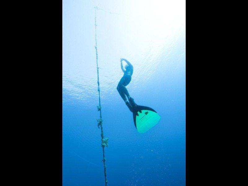 AIDA  Symbol of Freediving