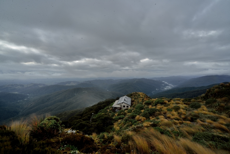 Talk the Walk - Mt Holdsworth in the Tararuas | RNZ