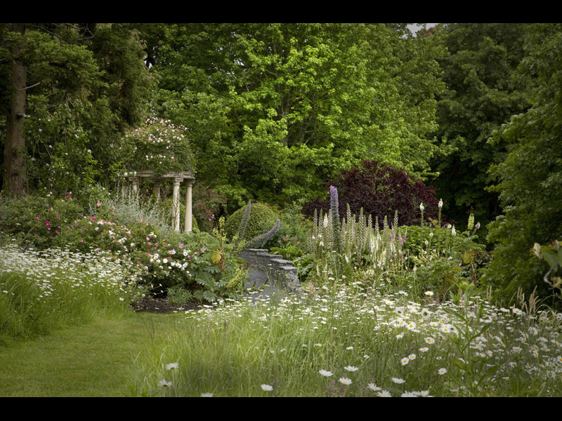 Ayrlies garden a gallery from nine to noon radio new for Landscape design jobs new zealand