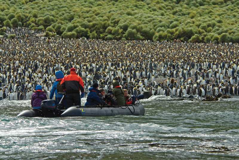 Adventures and misadventures on the wild and remote subantarctic islands Trial of Strength