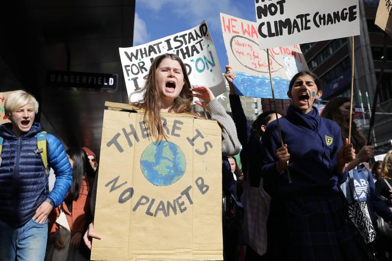 Pupils walk out of class in climate protests