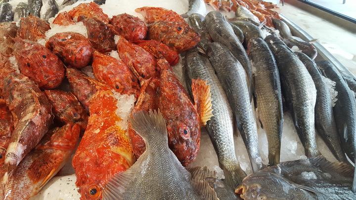 Auckland Fish Market