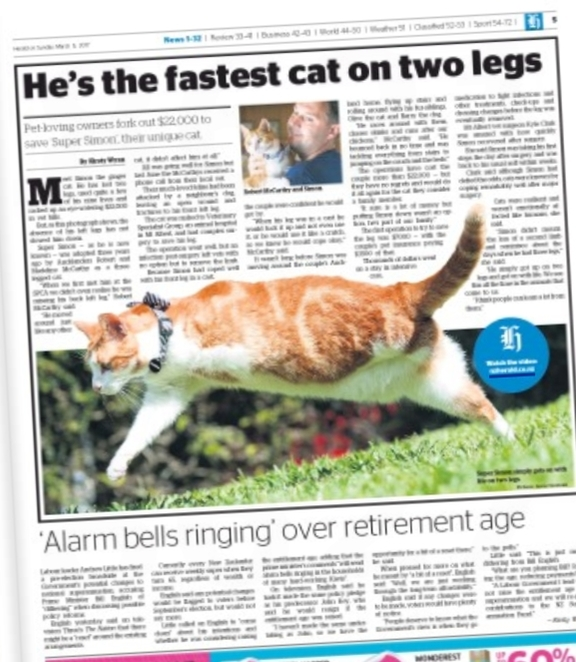 Two-legged cat beats retirement savings in the Herald on Sunday.