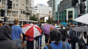 A sea of umbrellas as rain falls in the Auckland CBD