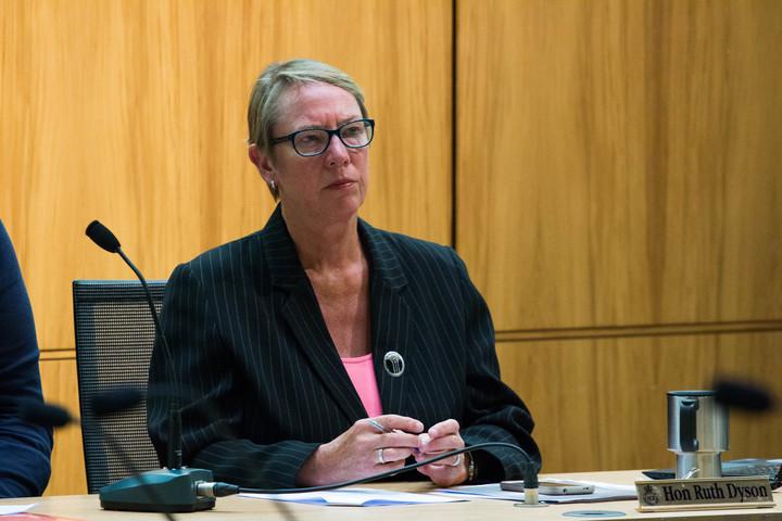 港口的工党议员Hills Ruth Dyson主持对字幕的调查。