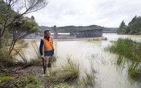 Watercare's James Talbot surveys Cosseys Dam in the Hunua Ranges.