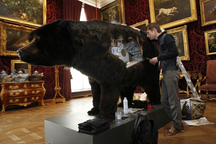 French artist Abraham Poincheval and the hollowed-out bear he lived in.
