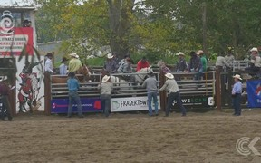 Rodeos 'problematic and prosecutable' if it wasn't for Govt legislation