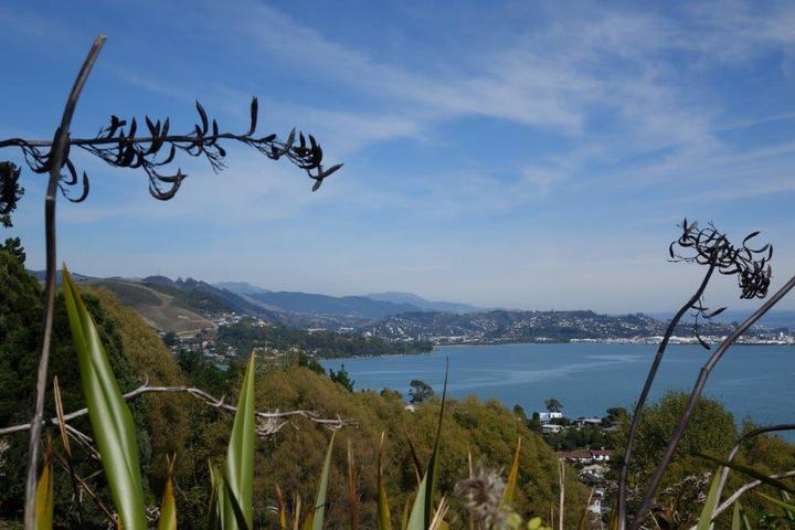 Nelson is among the country's fastest growing regions, but growth is limited by its hilly surrounds. Available land for housing is at a premium.
