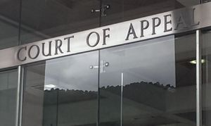 Court of Appeal in Wellington.