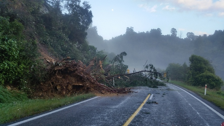 Trees have been brought down on the road between Ohope and Opotiki.