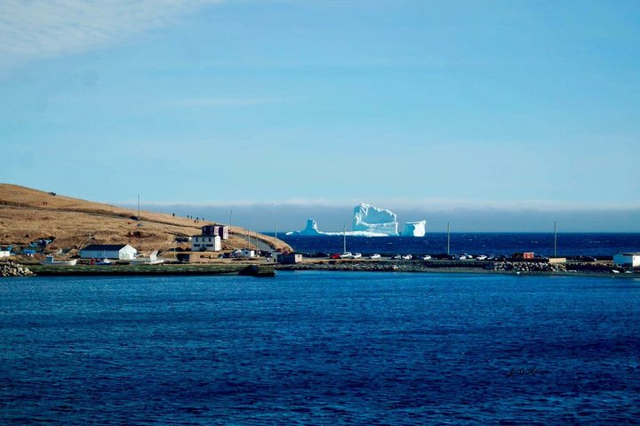 The iceberg looms behind the Newfoundland town of Ferryland