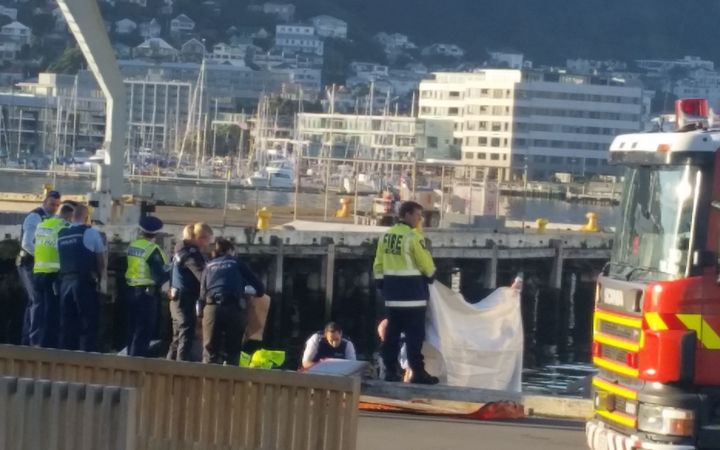 The Wellington waterfront this morning, where a body has been found.