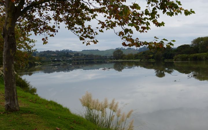 Search begins for person missing in Whanganui River