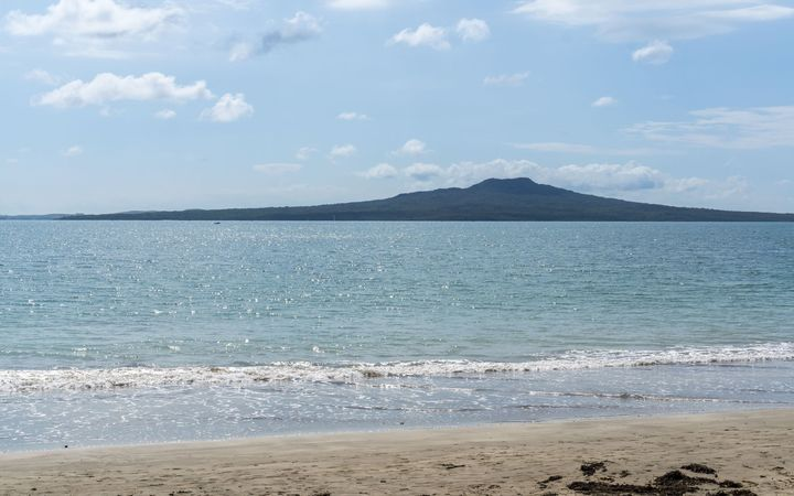 Narrow Neck Beach on Auckland's North Shore.