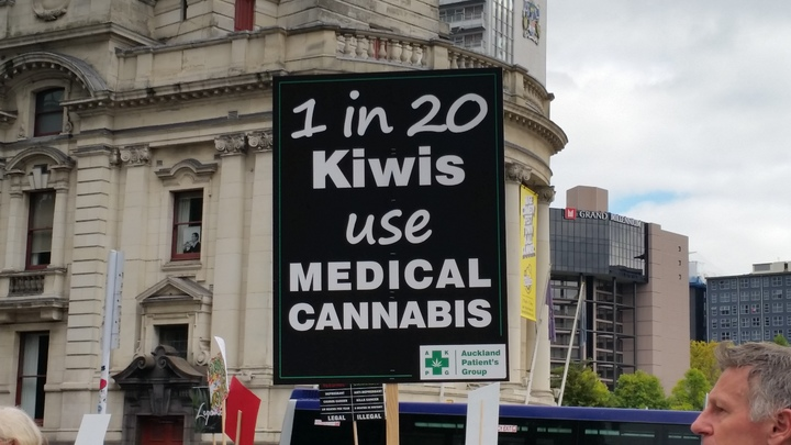 A sign at a protest for medicinal cannabis on 22 April 2017.