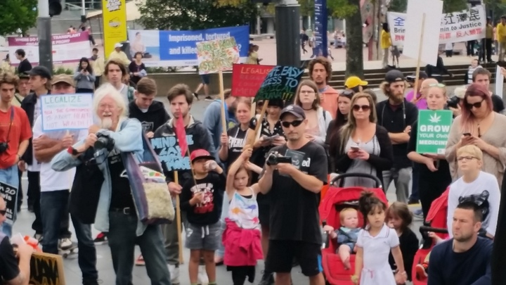 Crowd at protest in favour of medicinal cannabis on 22 April 2017.