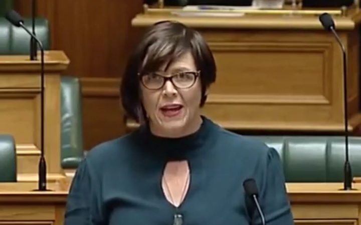 Green MP Jan Logie speaks to Parliament at the bill's first reading.