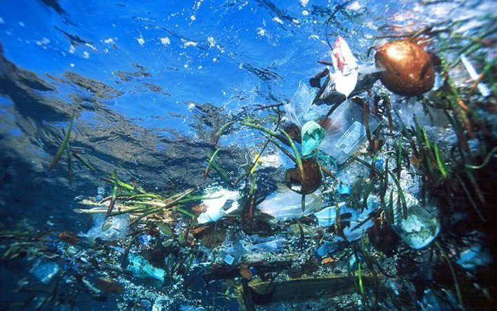 Plastic in the ocean.