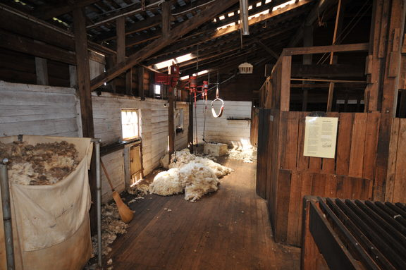 Interior of the shearing shed at Brickendon Historic Estate