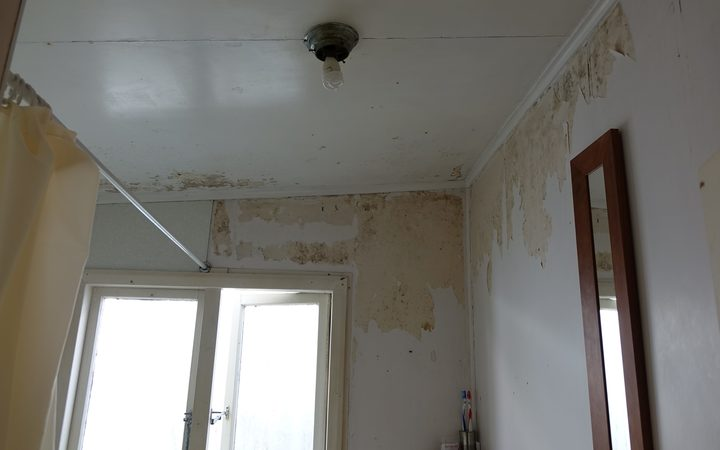 There was quite a high level of mould detected, particularly in the bathroom, said Mr Pierce. Photo / Michael Cropp