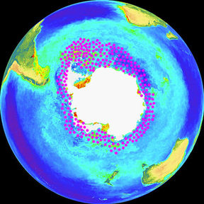 Where krill are found – concentrated round the Antarctic Peninsula