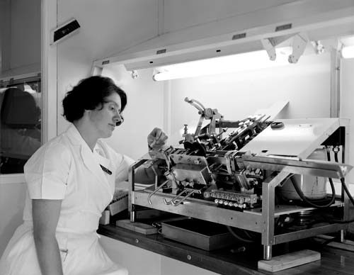 Smallpox vaccine production, 1970