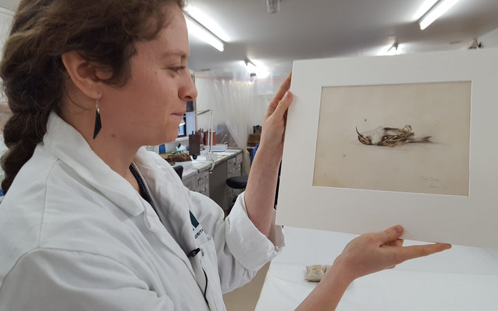 Mystery painting found in Antarctic hut