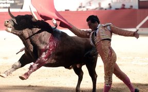 Spanish matador Ivan Fandino in the ring before he was fatally gored by the bull.