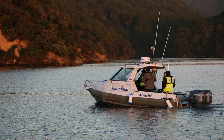 MPI Fisheries officers supervise the removal of oysters from Big Glory Bay in Stewart Island.
