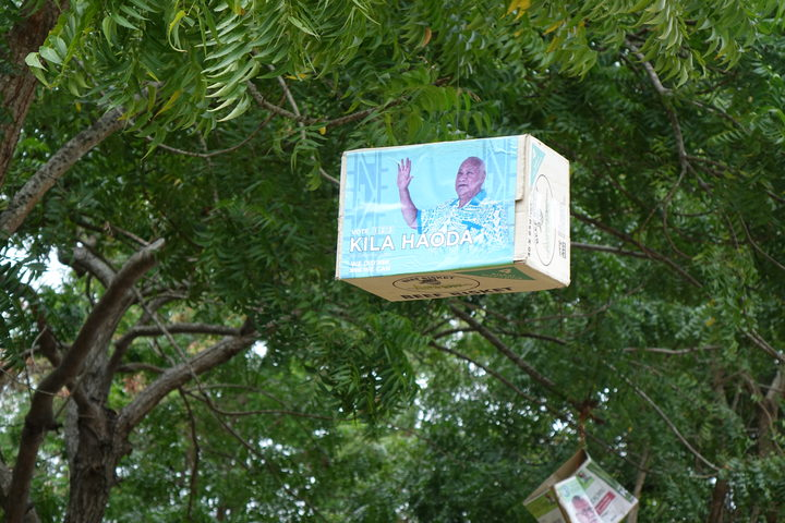Trees are adorned with various campaign posters in Central Province.