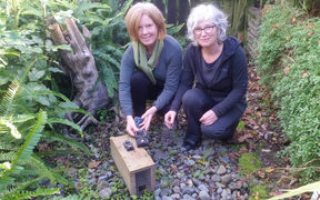 Linda Kerkmeester (left) and Heather Evans with with one of the traps they use to catch pests in their Plimmerton backyards