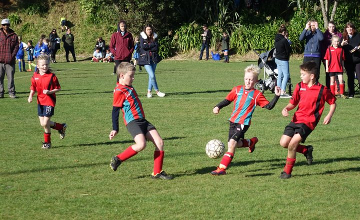 Junior soccer players from New Plymouth's Peringa Football Club compete in a tournament