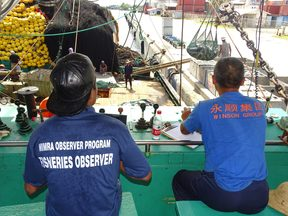 Fisheries observers monitor tuna catches on board purse seiners as well as in-port transshipment, which provides important data for fisheries managers.