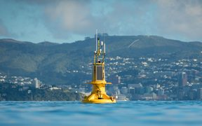 The buoy was put into place southeast of Matiu Island in Wellington harbour today.