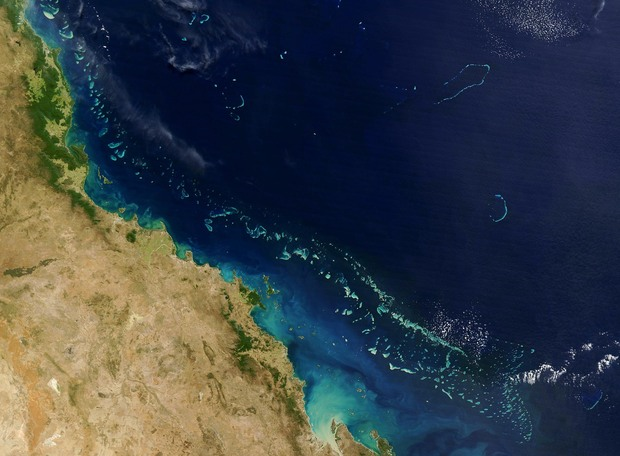Part of the Great Barrier Reef.