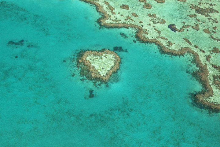 Heart Reef, a unique coral formation in the Great Barrier Reef