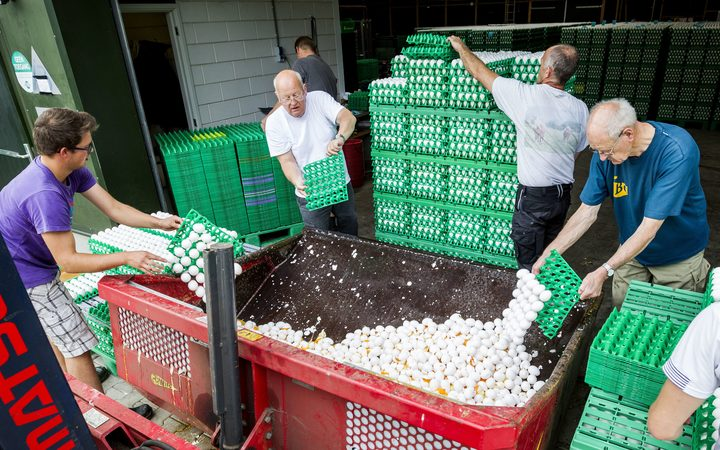 Farmers throw eggs after tests found Dutch eggs contaminated by fipronil which can be harmful to humans.