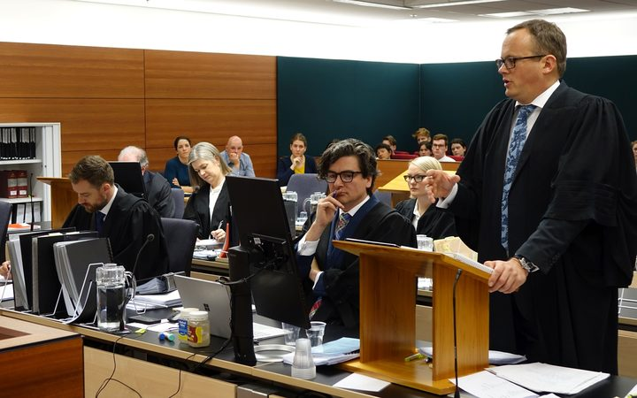 Lawyer Davey Salmon for the kiwifruit growers speaks at Wellington High Court.