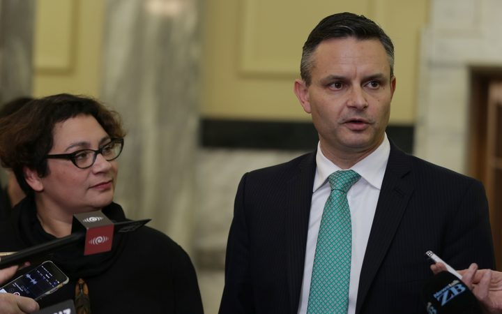 Metiria Turei and James Shaw, after the announcement Mrs Turei would resign as Greens co-leader.