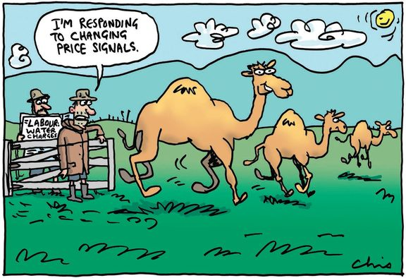 Farmers Weekly's cartoon shows farmers responding to Labour's water charging policy by converting to camels.