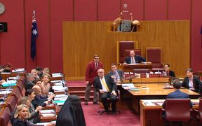 Pauline Hanson returns to the Australian Senate wearing a burka.