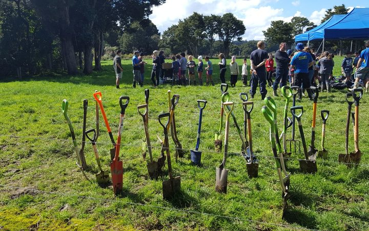 Kokopu school students planted 500 native trees and flax, on the banks of the Mangere stream, west of Whangarei.