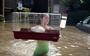 A rabbit is carried to a rescue boat after it was found floating in floodwater in Houston, Texas.