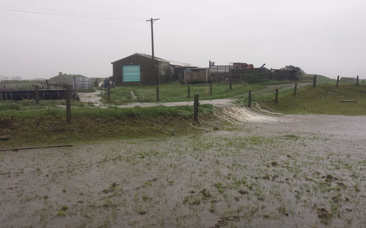 Vaughn Brophy's dairy farm has faced the wettest July and August he has seen.